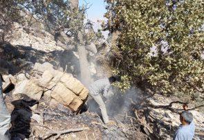 رئیس محیط زيست ایذه خبر داد: پایان آتشسوزی در منطقه حفاظت شده شالو و منگشت